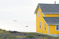 Landscape and travel photography dipicting summer life in the  Magdalen Islands, (Iles de la Magedelaine) Quebec. The small achipelago is located in The Gulf of Saint Laurence, Canada. © Allen McEachern.
