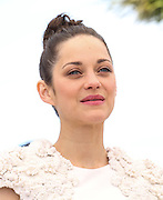 "Marion Cotillard attends the photocall of ""The Immigrant"" at the Palais De Festivals, Cannes France on May 24, 2013 in Cannes, France"