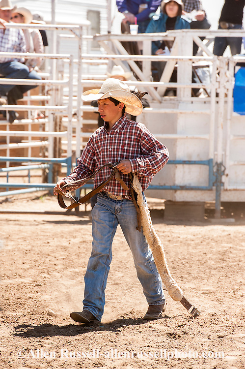 Haven Meged, rodeo crew, retrieves bucking strap, Miles City Bucking Horse Sale, Montana, MODEL RELEASED