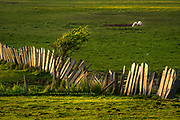 """Beautiful Separation"" Ynys Môn <br />