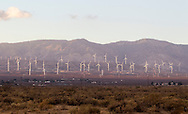 The windmill farm in Mojave Desert in Kern County, California, October 31, 2014. <br />  (Photo by Ringo Chiu/PHOTOFORMULA.com)