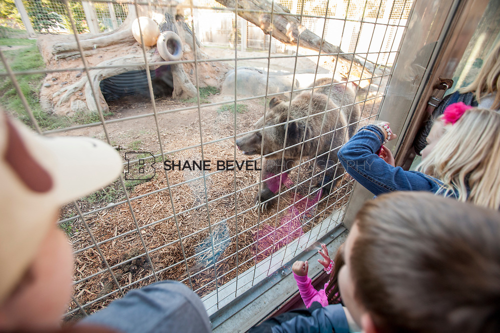 10/8/16 5:43:59 PM --  SFHS All-Employee Safari at the Tulsa Zoo. <br /> <br /> Photo by Shane Bevel