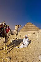 Camel drivers, Step Pyramid of King Zoser, Saqqara, Egypt