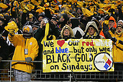 PITTSBURGH - JANUARY 23:  Pittsburgh Steelers fans wave Terrible Towels and hold up signs in support of their team and against the New England Patriots during the AFC Championship game at Heinz Field on January 23, 2005 in Pittsburgh, Pennsylvania. The Pats defeated the Steelers 41-27. ©Paul Anthony Spinelli