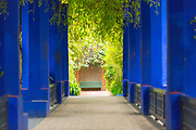 Majorelle Gardens, Marrakesh, Southern Morocco, 2015-04-19. <br />