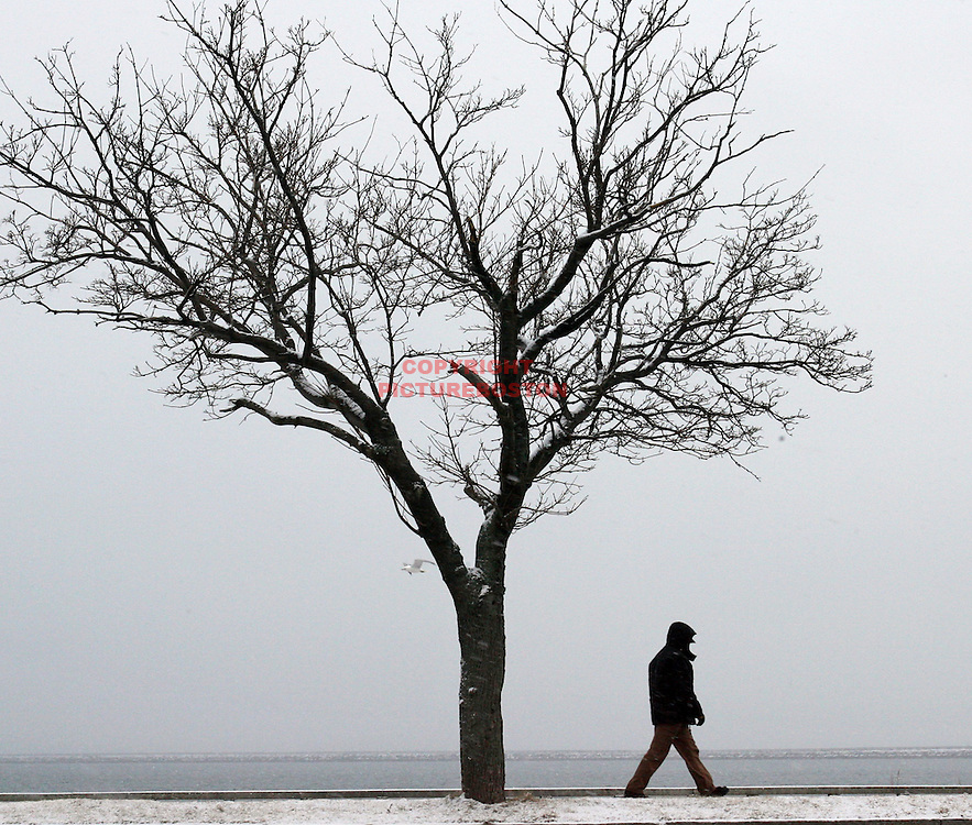 (02/16/10-Boston,MA.) Bostonians deal with this morning's forecasted moderate snowfall. Here, a man walks along the beach near Castle Island.Mark Garfinkel photo  Southie, South Boston
