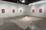 Installation view of Rebecca Lessen's Master of Fine Arts Exhibition. Art Lofts Gallery, Deapartment of Art University of Wisconin-Madison