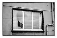 De Belgische vlag wappert tijdens de viering van het 100 jarig bestaan van de zeescouts op Linkeroever
