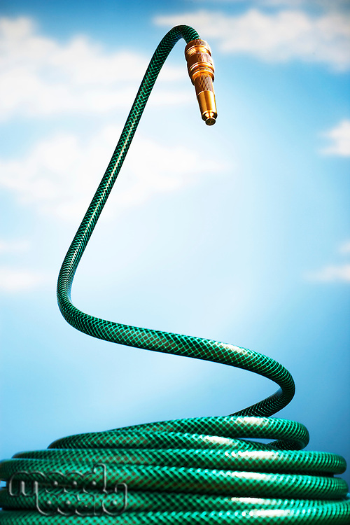 Curled up garden hose rearing up in front of blue sky