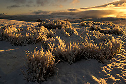 © Licensed to London News Pictures. 27/02/2020.  Builth Wells, Powys, Wales, UK.  A wintry landscape on the Mynydd Epynt moorland after snow fell on high land last night in Powys, Wales, UK. Photo credit: Graham M. Lawrence/LNP