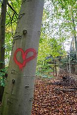 2007-2008 Arborglyphs, Beschreven bomen.