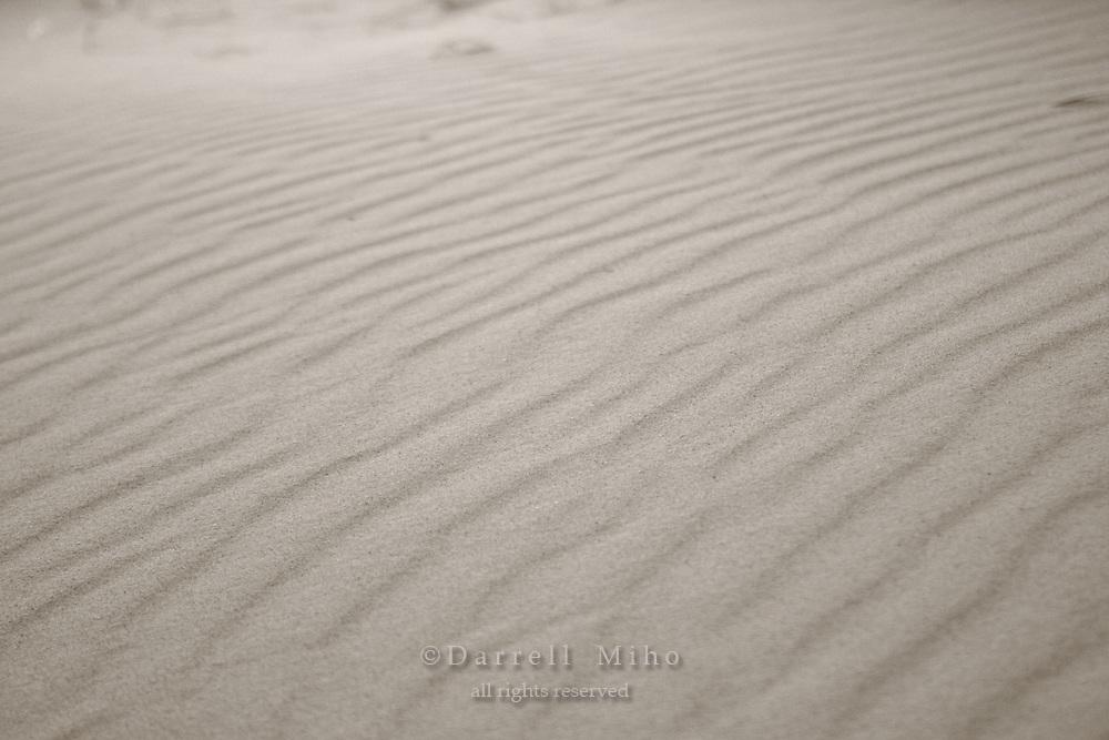 Nov. 05, 2008; Empire, MI - Sleeping Bear Sand Dunes State Park..Photo credit: Darrell Miho