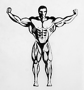 Ink drawing of a bodybuilder