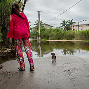 KEY LARGO, FLORIDA, NOVEMBER 15, 2016<br /> Twin Lakes resident Narelle Prew s walks her chihuahua Lexy on her block which has several areas flooded as a result of the flooding that follows a super moon. This is a regular occurrence in parts of Florida. <br /> (Photo by Angel Valentin/Freelance)