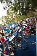 Elite athlete bikes in transition. Noosa Triathlon. 2012 Noosa Triathlon Festival. Noosa, Queensland, Australia. 04/11/2012. Photo By Lucas Wroe