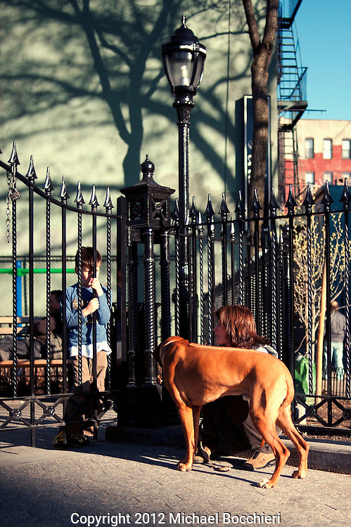 NEW YORK, NY - April 02:  A woman and a dog with a boy behind a fence on April 02, 2012 in NEW YORK, NY.  (Photo by Michael Bocchieri/Bocchieri Archive)