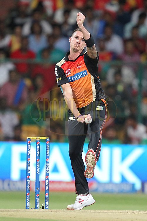 Dale Styne of the Sunrisers Hyderabad bowls during match 24 of the Pepsi Indian Premier League Season 2014 between the Royal Challengers Bangalore and the Sunrisers Hyderabad held at the M. Chinnaswamy Stadium, Bangalore, India on the 4th May  2014Photo by Prashant Bhoot / IPL / SPORTZPICSImage use subject to terms and conditions which can be found here:  http://sportzpics.photoshelter.com/gallery/Pepsi-IPL-Image-terms-and-conditions/G00004VW1IVJ.gB0/C0000TScjhBM6ikg