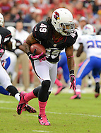Oct. 14, 2012; Glendale, AZ, USA;  Arizona Cardinals free safety Rashad Johnson (49) runs the ball during the first half against the Buffalo Bills at University of Phoenix Stadium. Mandatory Credit: Jennifer Stewart-US PRESSWIRE..