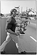 April 1976  •  Santa Monica, CA  •  buying a plant in Santa Monica  •  magazine assignment (Bunte)  •   Tri-X  •