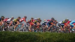Peloton during the 115th Paris-Roubaix (1.UWT) from Compiègne to Roubaix (257 km) at Guiscard, France, 9 April 2017. Photo by Pim Nijland / PelotonPhotos.com | All photos usage must carry mandatory copyright credit (Peloton Photos | Pim Nijland)