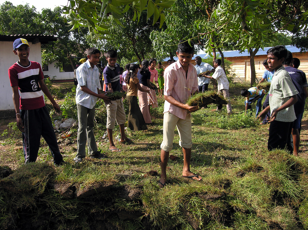 Local youth help to unload grass sod for the contstruction of one hundred temporary housing units for up to 600 people displaced by the 26 December, 2004 tsunami that struck S.E. Asia..Kirinda, Sri Lanka. 21/01/2005          .Photo © J.B. Russell