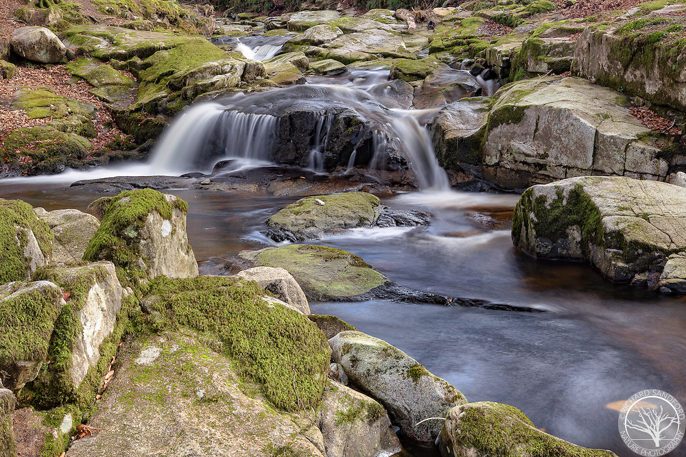 A river cascades through the woods in County Wicklow, Ireland