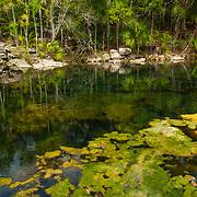 Cenote within Xcaret park. Quintana Roo, Mexico.