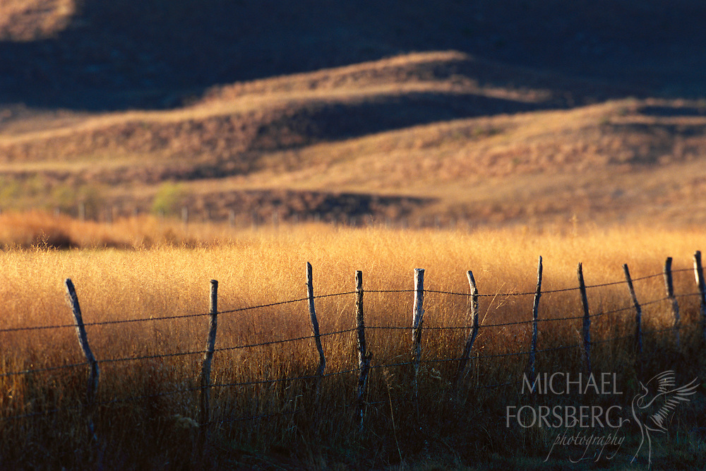 The sun sets on the grass pastures of the Nebraska Sandhills; light and shadow divided by a fence.