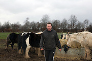 Ambrose, Romany Gypsy, with his horses in Doncaster, January 2012