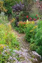 Brick path through the hot borders at Glebe Cottage. Dahlia 'Bishop of Llandaff', Rudbeckia fulgida var. deamii, Aster sedifolius, crocosmias, gladiolus and Cotinus coggygria Purpureus Group