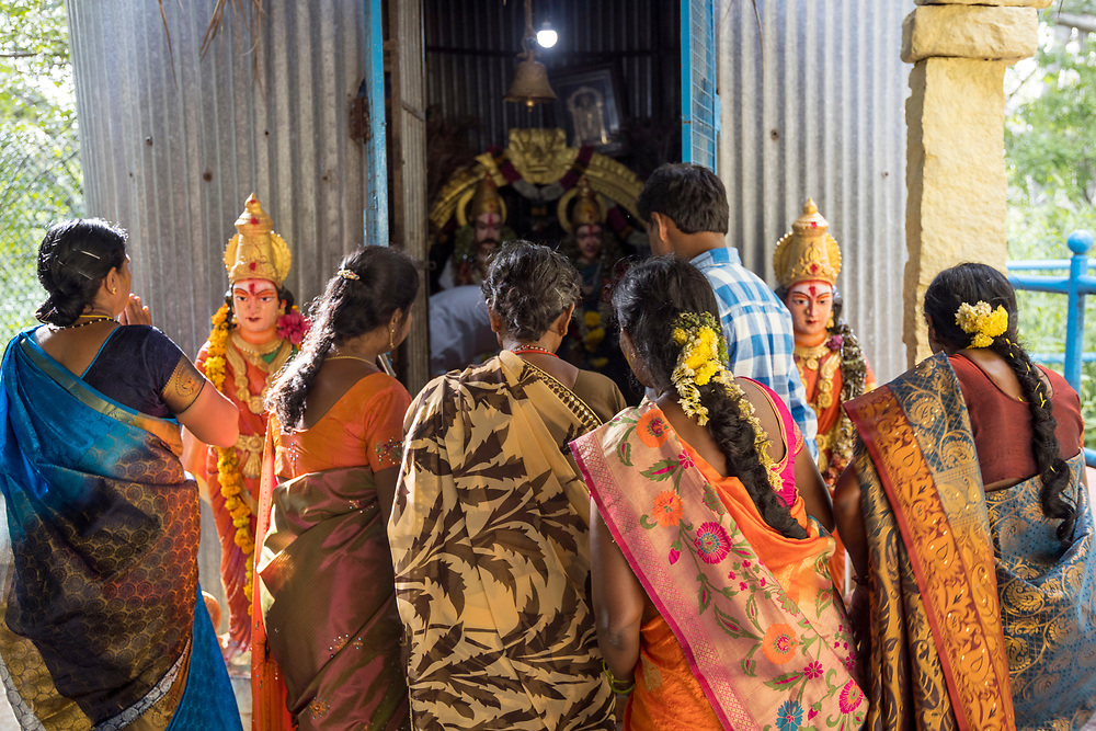 THIMMAMMA MARRIMANU, INDIA - 25 October 2019 - Pilgrims visit the temple at the centre of the Thimmamma Marrimanu banyan tree - the world's largest single tree canopy. A small shrine (pictured) houses icons of Thimmamma and her husband. The main shrine facing the samadhi houses a black stone icon of Thimmamma. The temple samadhi is believed to be the exact spot where Thimmamma threw herself onto the funeral pyre.