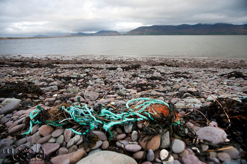 Rubbish on shore with water in background