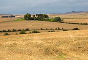 Chalk downland landscape fields of stubble looking west over East Kennett long barrow, Wiltshire, England, UK