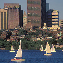 Charles river sailboats late afternoon on front of Beacon Hill, Boston, MA.