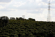 Varginha_MG, Brasil.<br /> <br /> Rede de transmissao de energia em meio ao cafezal, no municipio de Varginha, localizado no sul do estado de Minas Gerais.<br /> <br /> Transmission network power in coffee plantation, in Varginha, located in the southern state of Minas Gerais.<br />  <br /> Foto: RODRIGO LIMA / NITRO