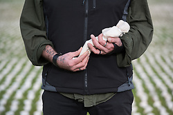 © Licensed to London News Pictures. 07/11/2018. London, UK. British artist Rob Heard holds one of tens of thousands of shrouds during the unveiling of his exhibit 'Shrouds of the Somme' ahead of Armistice Day in London, Britain, 07 November 2018. All 72,396 shrouds that represent the soldiers who were never recovered during World War I are laid out shoulder to shoulder at London's Queen Elizabeth Olympic Park to mark the centenary of Armistice Day. Photo credit: Ray Tang/LNP