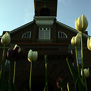 Old Main is framed with tulips on the Drake University campus in Des Moines, Iowa.