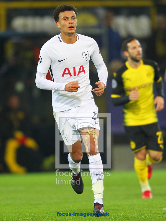 Dele Alli of Tottenham Hotspur during the UEFA Champions League match at Signal Iduna Park, Dortmund<br /> Picture by Yannis Halas/Focus Images Ltd +353 8725 82019<br /> 21/11/2017