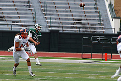 01 October 2016:  Brandon Bauer makes a pass as Kyle Fox retreats during an NCAA division 3 football game between the Wheaton Thunder and the Illinois Wesleyan Titans in Tucci Stadium on Wilder Field, Bloomington IL (Photo by Alan Look)