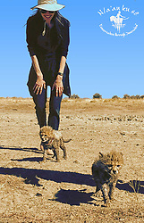 Angelina Jolie opens new Shiloh Wildlife Sanctuary at the N/a'an ku sê Foundation in Namibia, Southern Africa. 13 Jul 2017 Pictured: Angelina Jolie. Photo credit: MEGA TheMegaAgency.com +1 888 505 6342