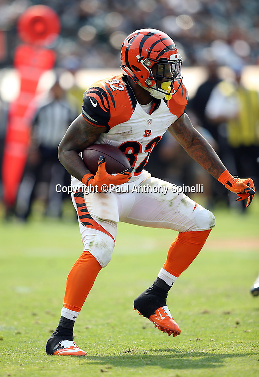 Cincinnati Bengals running back Jeremy Hill (32) runs the ball in the fourth quarter during the 2015 NFL week 1 regular season football game against the Oakland Raiders on Sunday, Sept. 13, 2015 in Oakland, Calif. The Bengals won the game 33-13. (©Paul Anthony Spinelli)