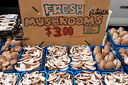 Fresh Mushrooms, Old Monterey Farmers Market, California
