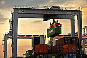 Container ships load and unload at the container berths at the Georgia Ports Authority Garden City Terminal facility Thursday, August 19, 2010. (Photo by Stephen Morton)