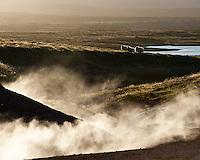 Venting hills of Geothermal area at Þeistareykir, North Iceland. Sheep grazing in background. Evening light. Gufa stígur upp frá jarðhitasvæðinu á Þeistareykjum. Sauðfé á beit. Falleg baklýsing, kvöldbirta.