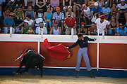 Professional bullfighter Oscar Higares guides a charging bull into a wall at the annual village festival of San Juan in Campos del Rio, near Murcia in southernSpain.  (Oscar Higares is featured in the book What I Eat: Around the World in 80 Diets.) After a dozen more passes, he kills the bull on his first attempt, eliciting a standing ovation from the crowd, which awards him the bull's ears and tail. Oscar and the bull spend just under 15 minutes together in the ring (an anxious period in which Oscar must control not only the objective dangers, but also his fear).  Each bullfight ends with the killing of the bull by the matador (bullfighter).MODEL RELEASED.