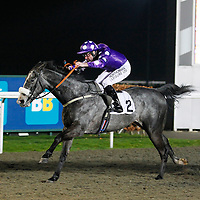 Tee It Up Tommo and Robert Winston winning the 8.45 race