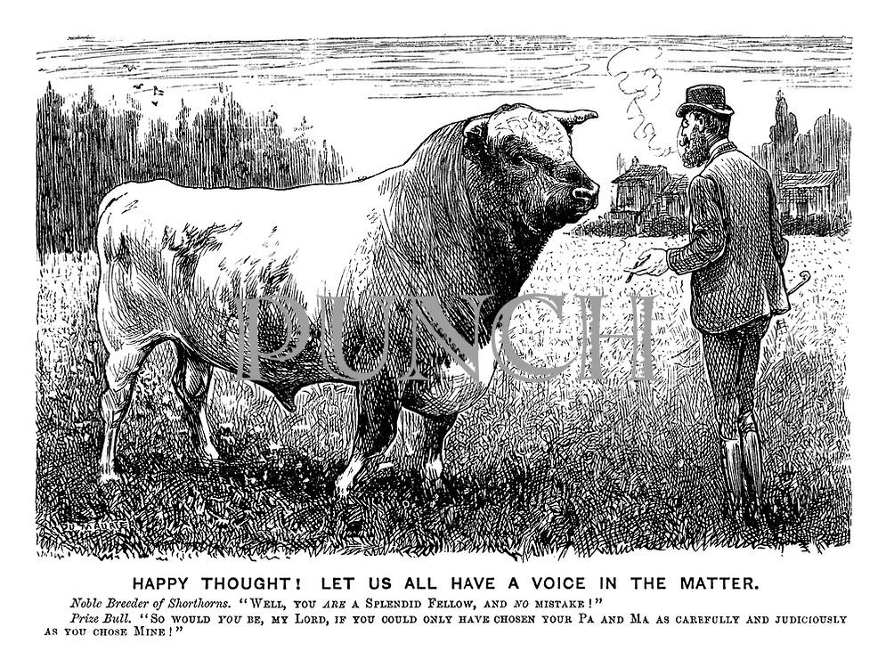 "Happy Thought! Let Us All Have A Voice In The Matter. Noble breeder of Shorthorns, ""Well, you are a splendid fellow, and no mistake!"" Prize Bull. ""So would you be, my Lord, if you could only have chosen your Pa and Ma as carefully and judiciously as you chose mine!"""