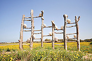 "Israel, Coastal Plains, Arsuf, Dina Park, ""Nature's Music"", 2008. Wood, stones (boulders), by Gila Croker"