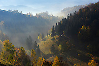 Hilly landscape in the morning light, Magura, National Park Piatra Craiului, Transylvania, Southern Carpathians, Romania