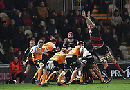 Cheetahs' Tian Meyer clears charge down by Dragons' Joseph Davies<br /> <br /> Photographer Mike Jones/Replay Images<br /> <br /> Guinness PRO14 Round Round 18 - Dragons v Cheetahs - Friday 23rd March 2018 - Rodney Parade - Newport<br /> <br /> World Copyright © Replay Images . All rights reserved. info@replayimages.co.uk - http://replayimages.co.uk